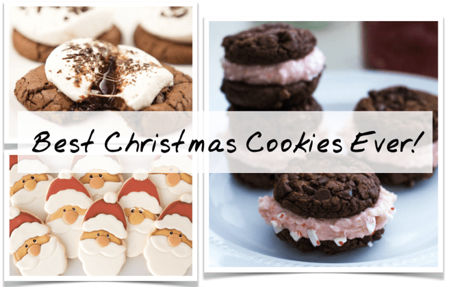 11 Best Christmas Cookies 2019 Easy Recipes For Christmas Sugar